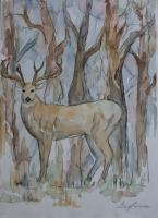 yes-deer