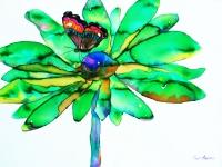 coreopsis-green_0