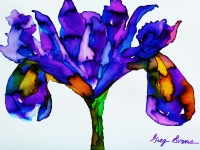 iris-purple-small-2
