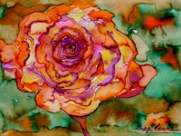 rose-orange-small
