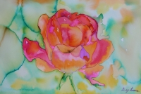 rose-sunburst-3